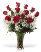 One Dozen Red Roses with Babies Breath
