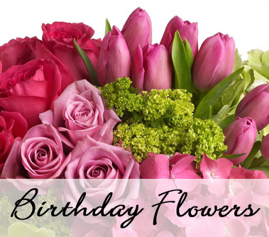Ft lauderdale florist send flowers sunrise fl flowers from the birthday flowers category mightylinksfo