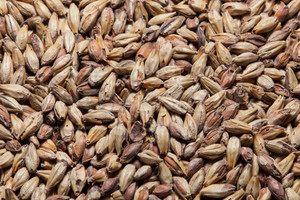 Victory Malt, Briess 1 lb