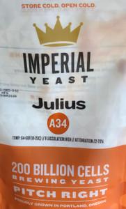 Julius A34
