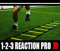 1-2-3 Reaction Pro Video Trainer