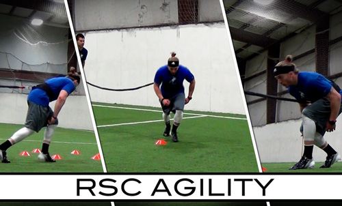 RSC Agility Digital Trainer