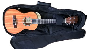 TSD UKE Series Gig Bag Features (Uke NOT included)