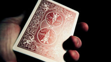 Red Bicycle Titanium Edition Playing Cards