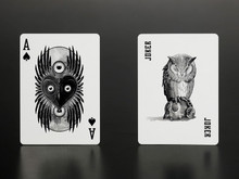 Owl Eyes playing cards available from kardsgeek.com in Sydney Melbourne Austraila