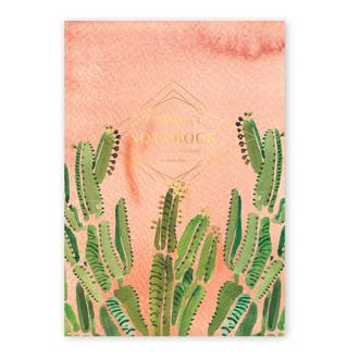Jotter Supreme, Coral Cactus