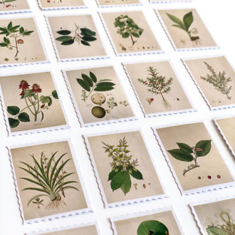Plant Stamps Sticker Set