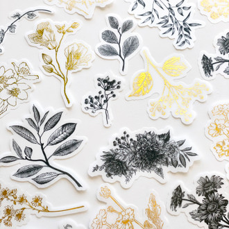 Sticker Pack: Black and Gold Botanical