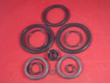 O-Ring Kit,Viton _ FPV  -  2500ml