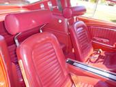 MP-HR-RED -- RED Rotunda Headrest