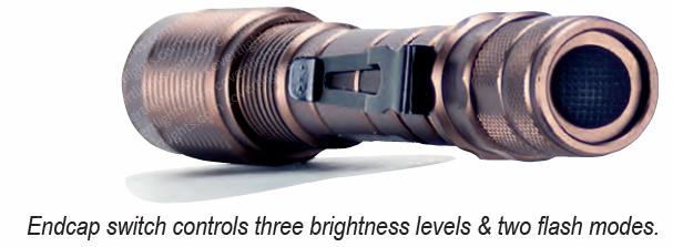 clt-09-3550-led-endcap.jpg