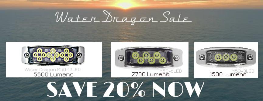 water-dragon-sale-104.jpg