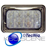 K60-SW00-1 SCENE 6x4 Surface Mount SCENE Light TecNiq