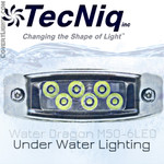 Water Dragon Underwater Light 6 LED