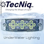 Water Dragon Underwater Light 12 LED