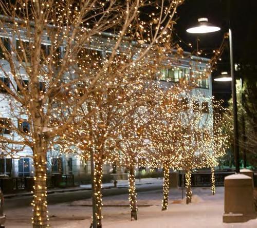 Blue Led Christmas Lights Clearance