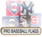 Professional Baseball Flags / Pro Team Flags