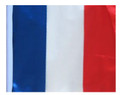 FRANCE SSP Motorcycle Flag with Sissybar or Trunk Style Pole