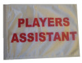 PLAYERS ASSISTANT 11in x15 Replacement Flag for Motorcycle, Golf Cart and Car flag poles