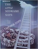 The Little Midrash Says - Bereisheet (Genesis)