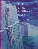 The Little Midrash Says - Yehoshua (Joshua)