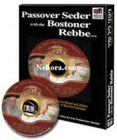 Passover Seder with The Bostoner Rebbe