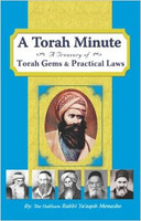 A Torah Minute vol. 2: A Treasury of Torah Gems and Practical Laws