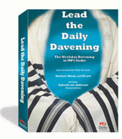 Lead the Daily Davening