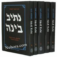 Netiv Bina-Yisachar Jacobson 5 Vol.     נתיב בינה תפילה -הרב יששכר יעקבסון