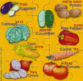Vegetables Magnetic Puzzle  GM-MPV