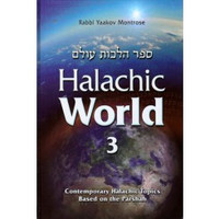 Halachic World Volume 3