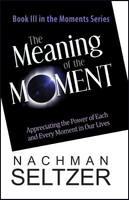The Meaning of the Moment: Appreciating the Power of Each and Every Moment in Our Lives