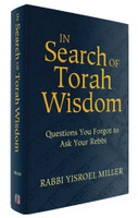 In Search of Torah Wisdom: Questions You Forgot to Ask Your Rebbi