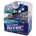MTEC Halogen Bulbs