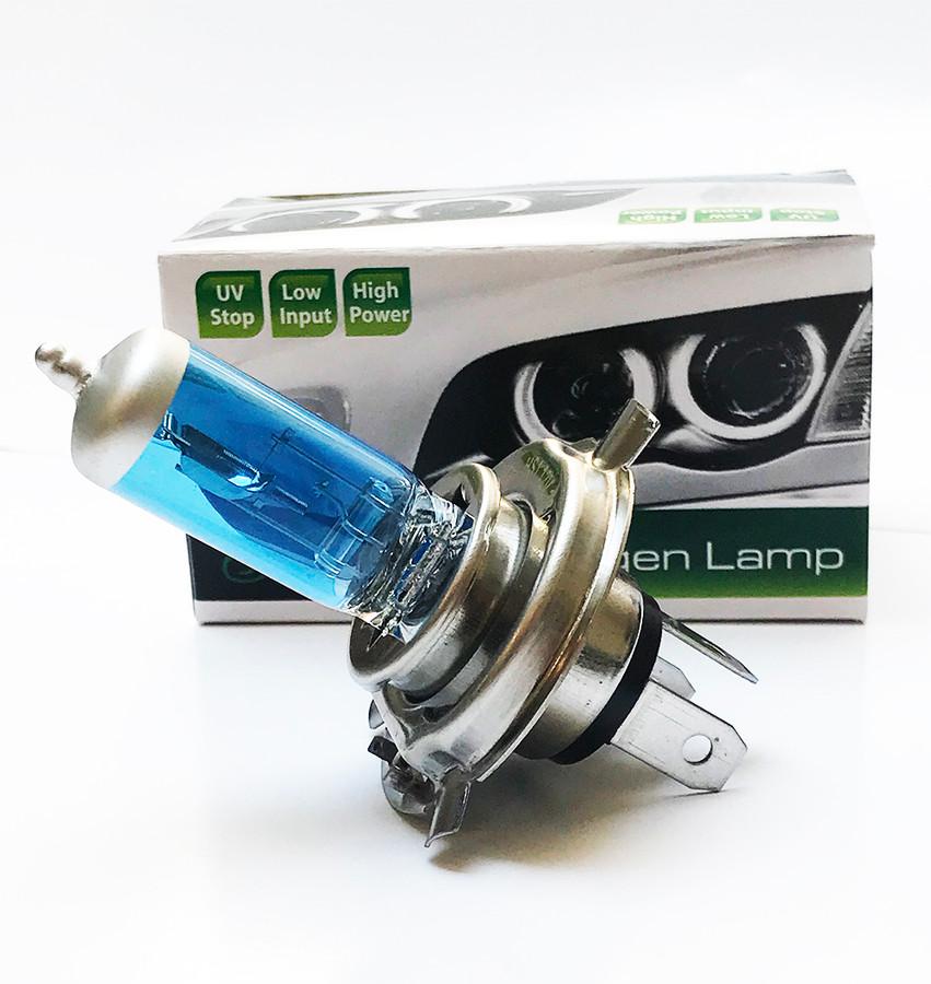 Licence Plate Light Bulbs 2x Daewoo Tacuma Standard Halogen Neolux Rear Number