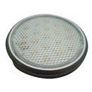 LED 19 Downlight