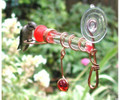 Window Wonder One Tube Hummingbird Feeder with Red Glass Bead & Perch