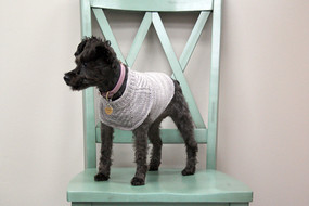 Harness-Friendly Dog Sweater