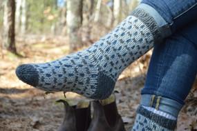Blayne House Socks