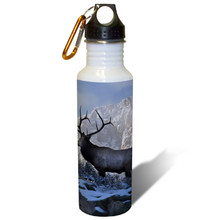 Top of the World Bull Elk - 22oz. Stainless Steel Water Bottle