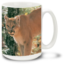 Majestic Cougar against a beautiful forest background.