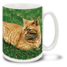 Garfield Orange Tabby - 15oz. Cat Mug