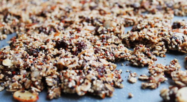 Shiloh Farms Almond-Raisin Quinoa Granola