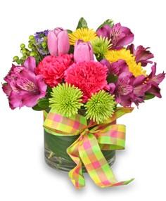 spring-zing-bouquet.236-99916.1333209480.300.300.jpg