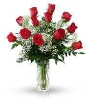 Classic Dozen Red Rose Arrangement by Winnipeg Florist, Dragonfly Flowers