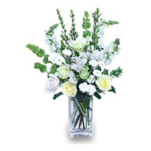 COOL WINTERGREEN Flowers in a Vase