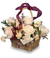 Rose Garden Basket of Ivory Roses