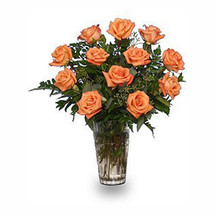 Orange Blossom Roses