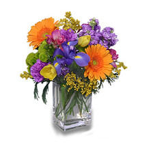 Our Best Selling Winnipeg Florists Arrangement!  Celebrate the Day!