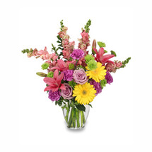 stem green bupleurum 3 stems green button poms 5 lavender carnations 4 pink snapdragons 2 stems hot pink lilies 2 lavender roses 2 yellow gerberas
